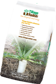 Tillage Radish Bag